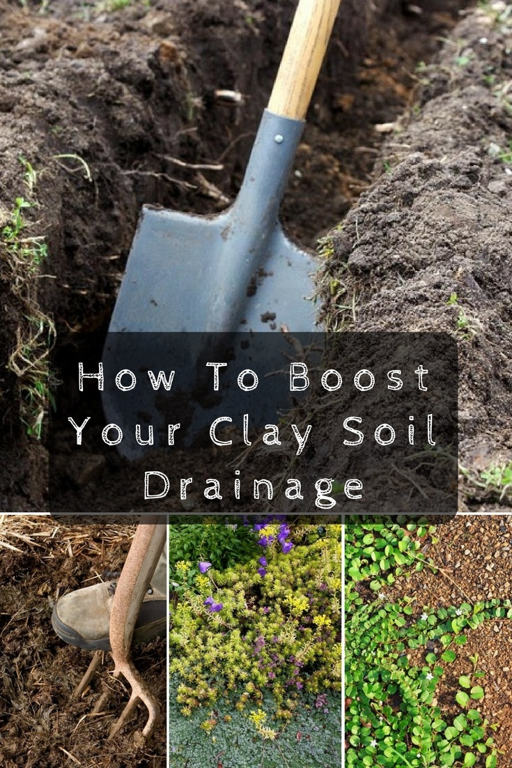 How To Boost Your Clay Soil Drainage A Green Hand