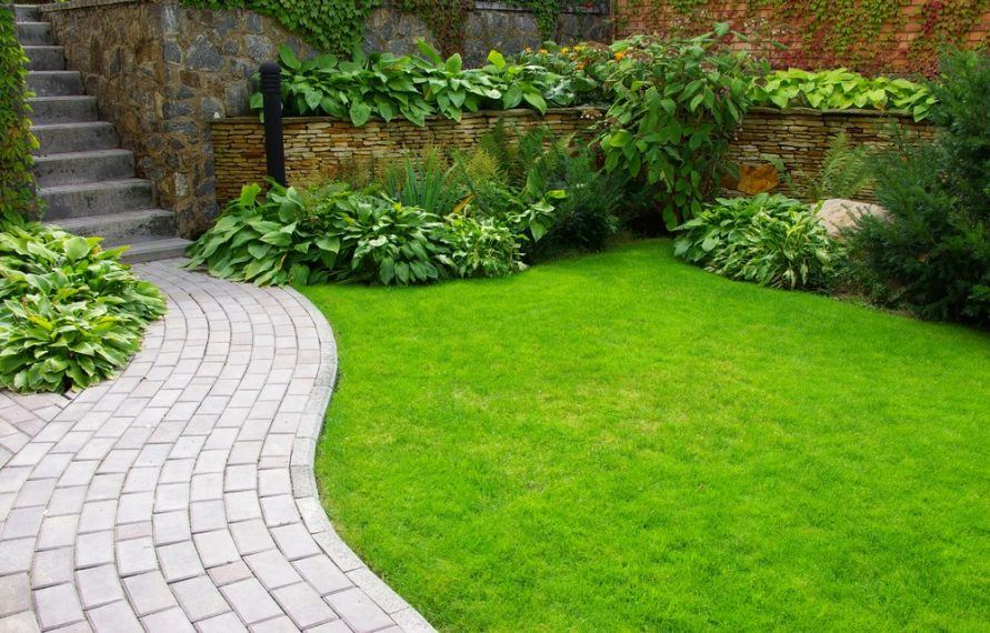 best grass seeds for clay soil