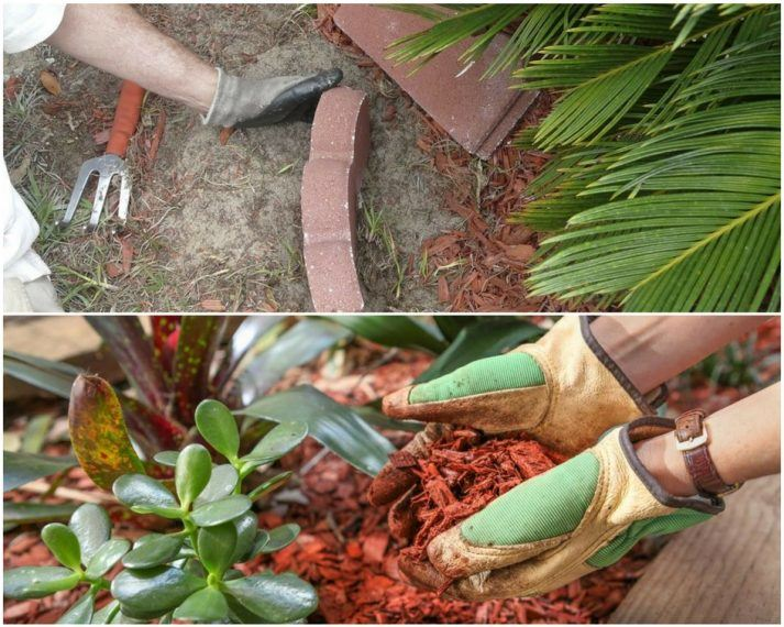 cedar vs cypress mulch