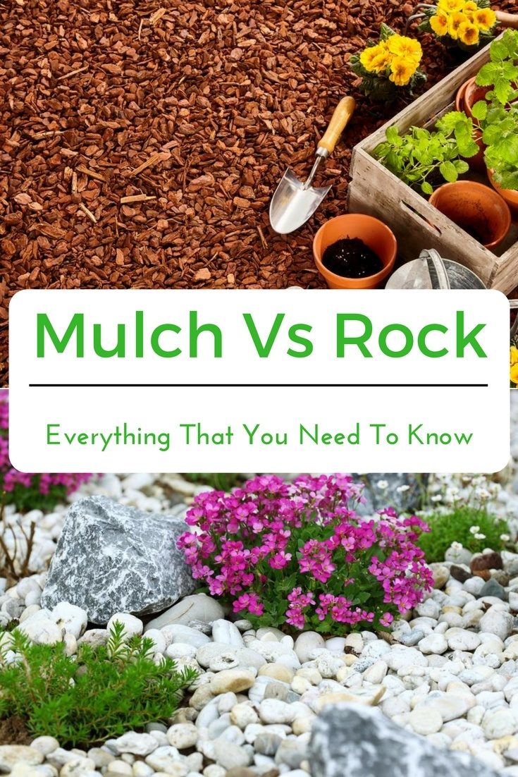 Did you know the mulch and rock have their respective differences? Are you one of the gardeners who are confused as to which to use? Familiarize yourself with mulch and rock by reading the provided information below. #mulch #rock #mulchvsrock #agreenhand