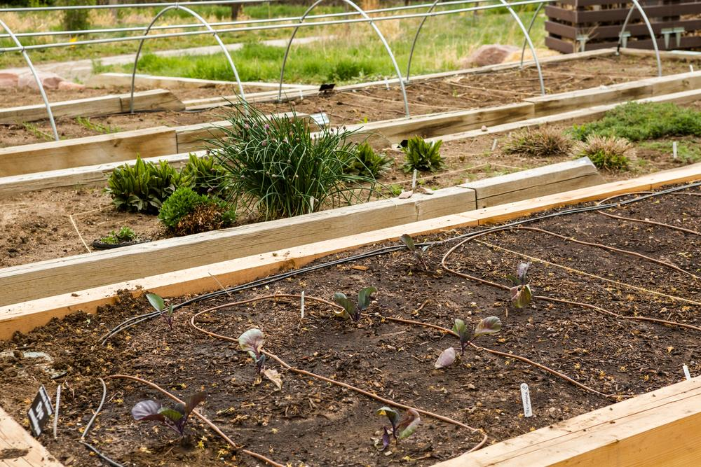 When Should You Use A Raised Bed Soil Calculator