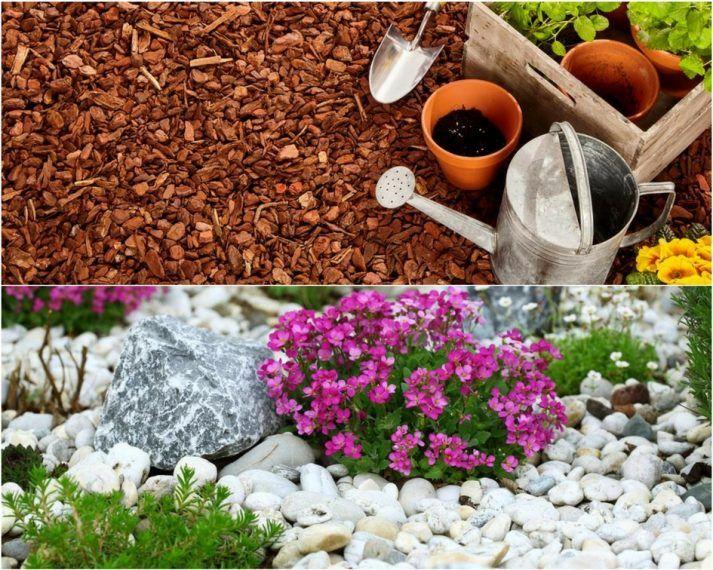 mulch vs rock