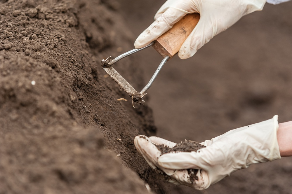 is clay soil acidic