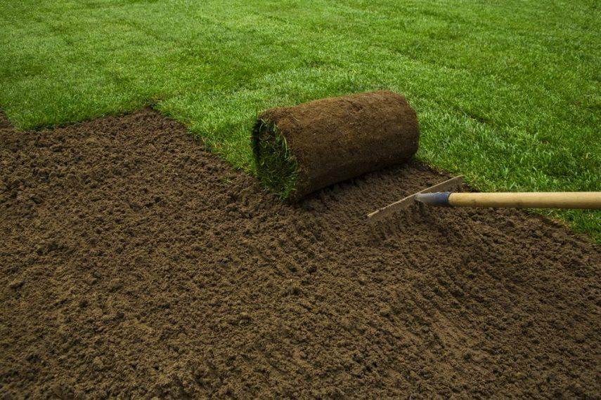 preparing soil for sod