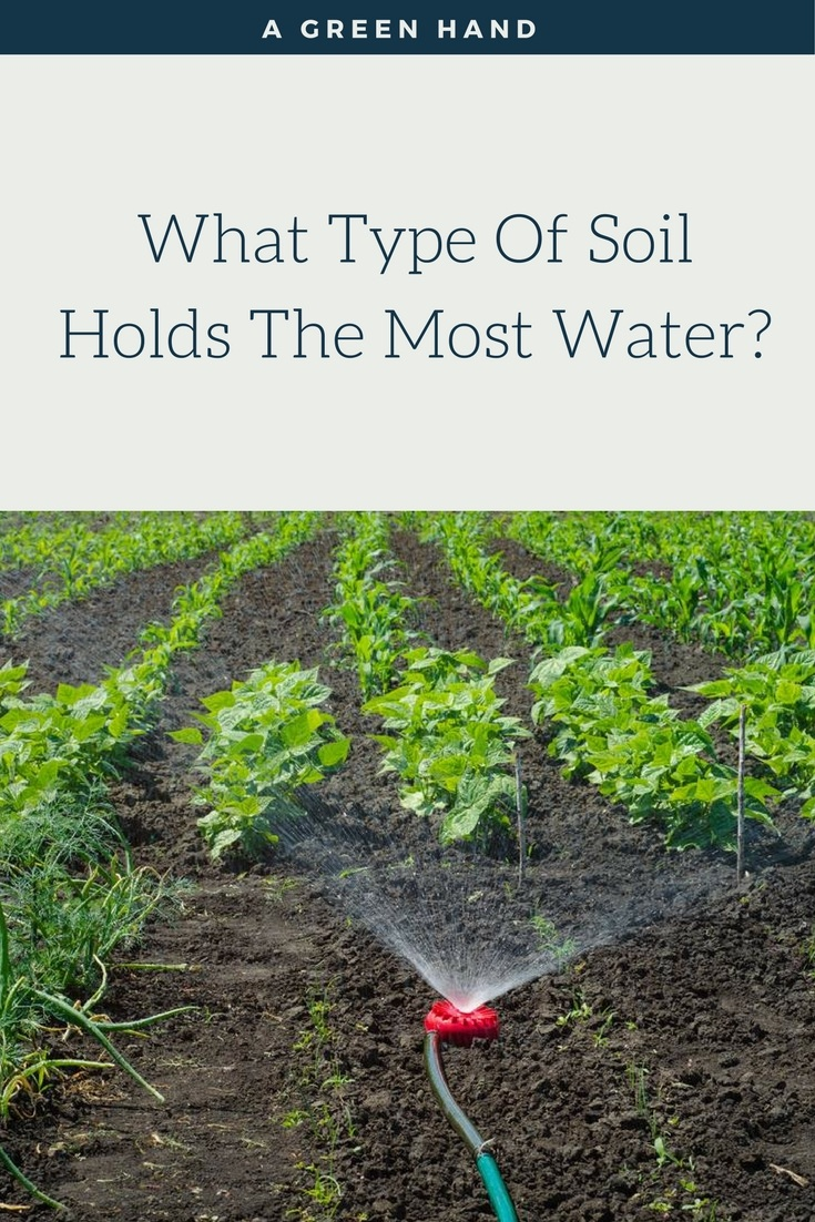 What Type Of Soil Holds The Most Water