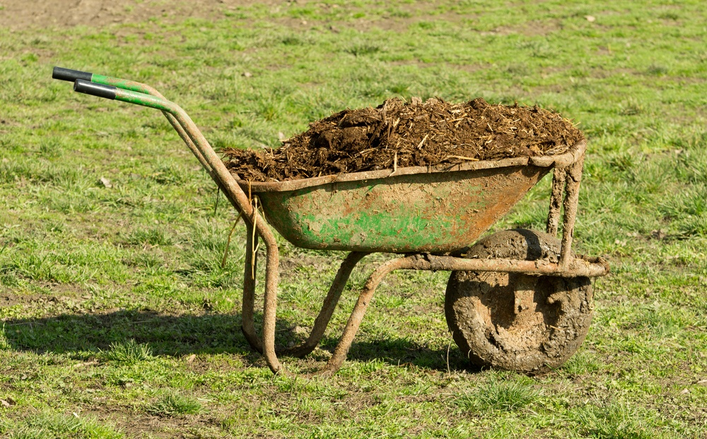 when to apply winterizer fertilizer