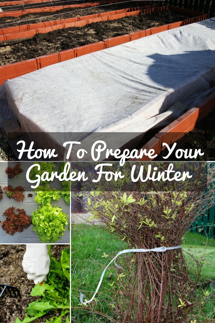 how to prepare your garden for winter a green hand