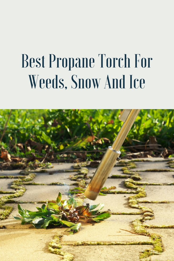Best Propane Torch