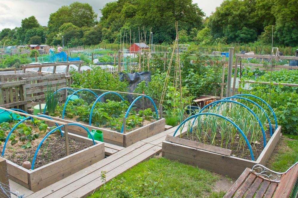 how to build a hoop house
