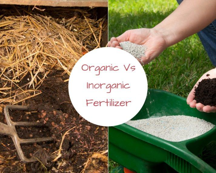 Organic vs Inorganic fertilizer