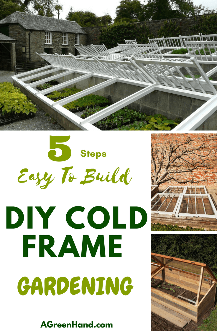 Easy To Build Diy Cold Frame Gardening Steps A Green Hand