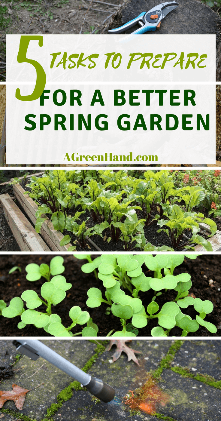 5 Tasks To Prepare For A Better Spring Garden #springgarden #gardening #vegetablegarden #agreenhand #herbgarden #flowerfarm #herbs #weedcontrol