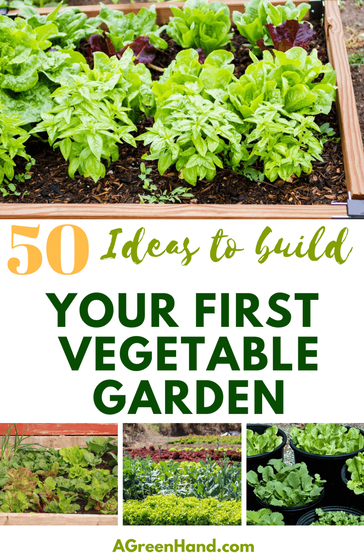50 ideas to build your first vegetable garden a green hand for Great vegetable garden ideas