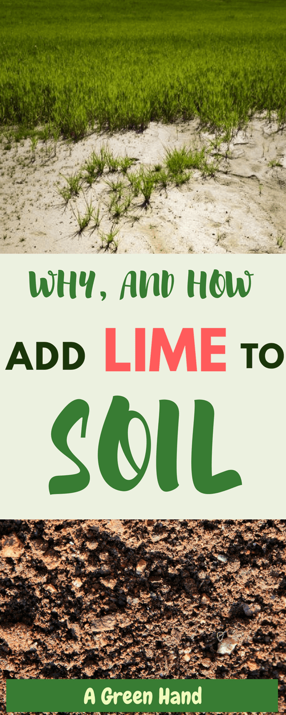 How To Add Lime To Soil #soilcare #lawncare #lime #gardening #gardeningtips #agreenhand
