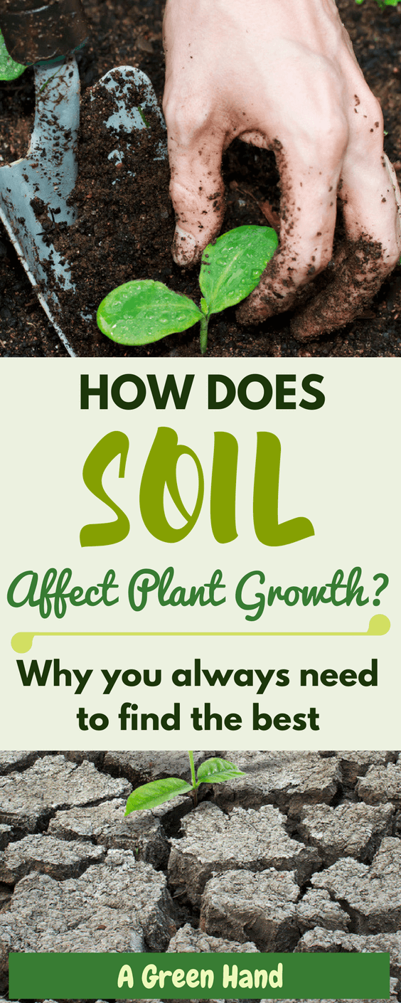 ​Soil PH, soil aeration, soil drainage and soil type are some terms that you will come across as a gardener. Understanding them is vital as it will help you comprehend how soil affects plant growth and why you always need to find the best. #Soilcare #gardening #agreenhand