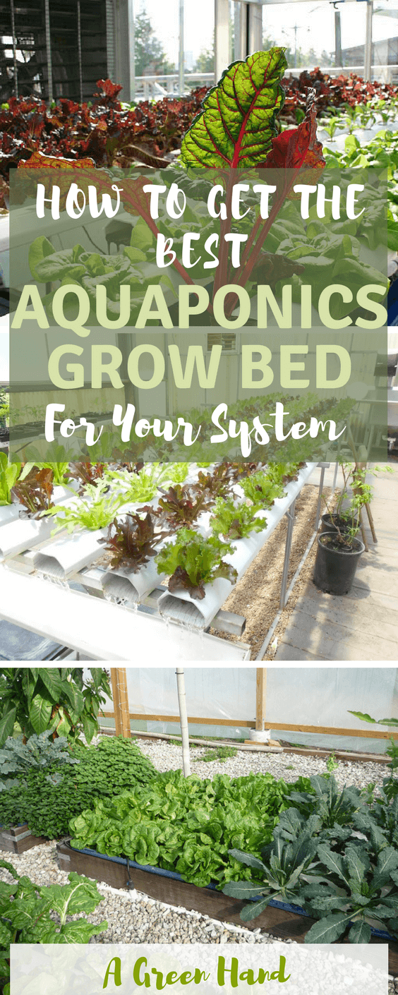 How To Get The Best Aquaponics Grow Bed For Your System #aquaponicsgrowbed #gardening #agreenhand #hydroponics