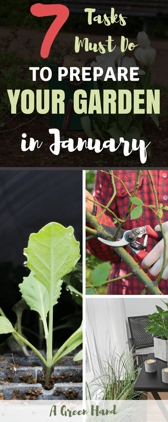 7 Tasks Must Do To Prepare Your Garden In January - #gardeningtasks #gardening #january #wintergardening #agreenhand