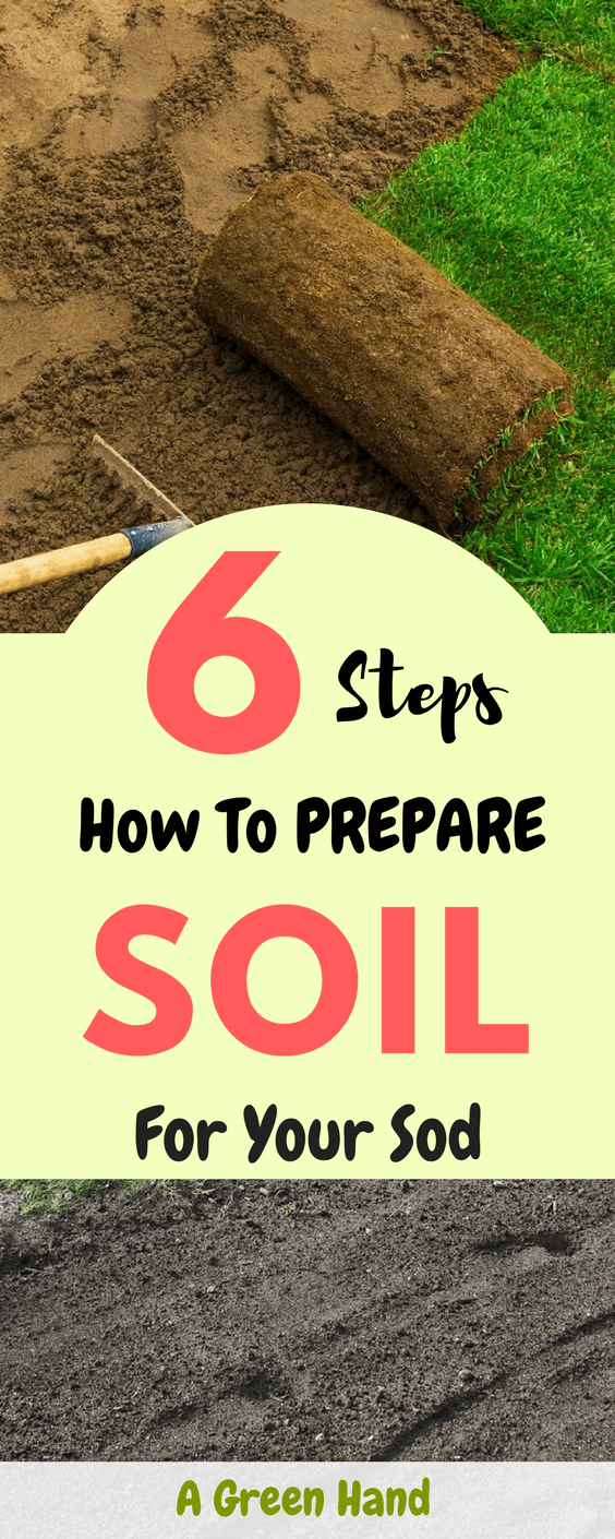 What Is The Right Method For Preparing Soil For Sod? I perceived sharing the soil preparation steps could help out all those amateur enthusiasts like me who love having a lush green lawn and enjoy doing it on their own. #soilcare #sod #gardening #agreenhand