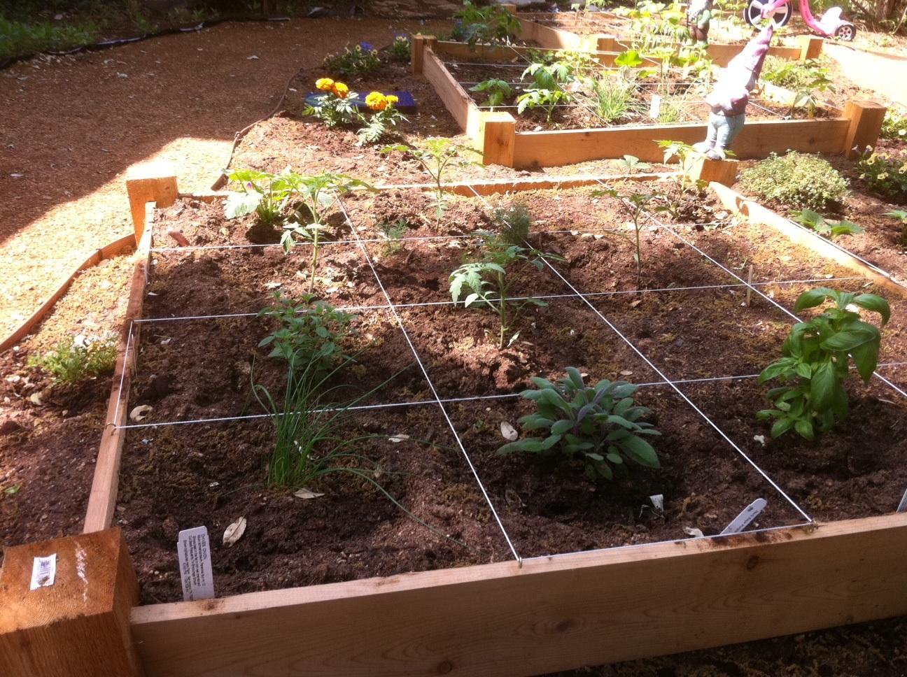 10 Small Vegetable Garden Ideas - A Green Hand