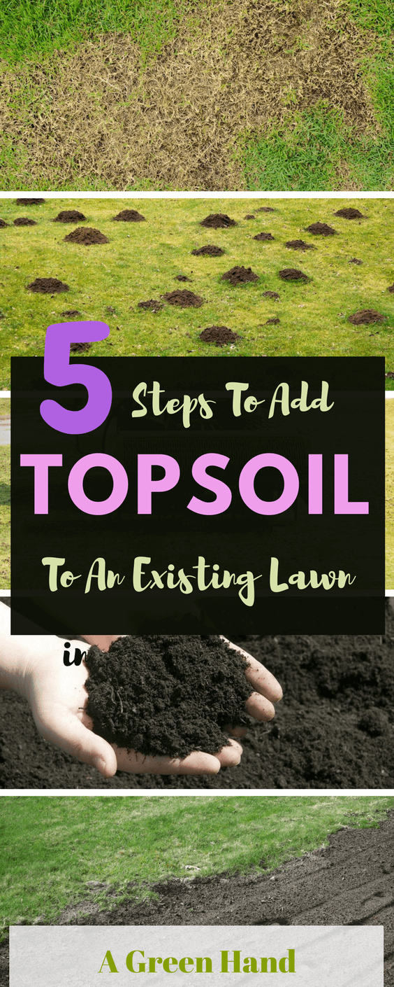 How to add topsoil to an existing lawn: 5 Easy Steps Guide. Adding topsoil to existing lawn can be quite challenging, and this is more so if you do not know how to do it well and do not use the right soil and tools #topsoil #springgarden #gardening #agreenhand