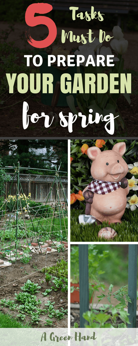 Spring is a wonderful time for your garden, but you must be willing to exert time and effort to keep things under control. There are certainly a lot of tasks and projects to do in your garden in spring. Some activities such as pruning your shrubs and trees are meant to help them transition from winter to spring. #gardeningchecklist #gardeningtips #gardening #agreenhand