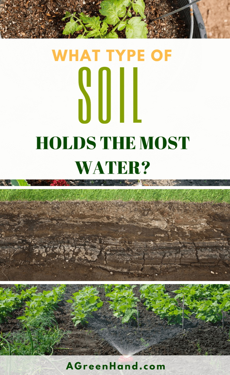 What Type Of Soil Holds The Most Water? Not every soil has the same composition. In fact, it's likely that the soil in your garden is made up of various types. In turn, this affects the soil's capacity to retain water and nutrients. #soiltexture #soilorganic #gardening #compost #sandysoil