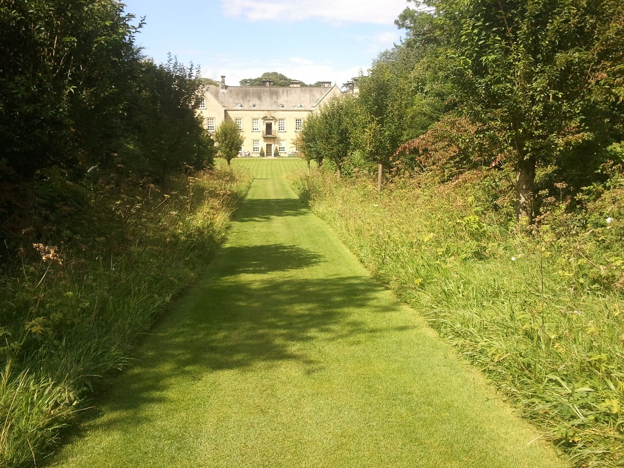 Garden Path Ideas: Grass Pathway