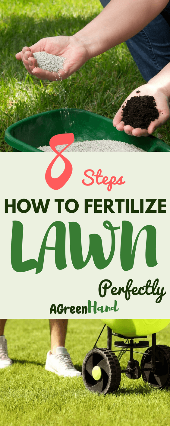 You will know how to fertilize lawn perfectly in this Spring. understand that fertilizing does not only affect how your plants grow or how it looks like but also adds on the frequency of checking your garden. Nitrogen is the most important ingredient brought about by fertilizers, and every type of grass needs a specific amount of it.