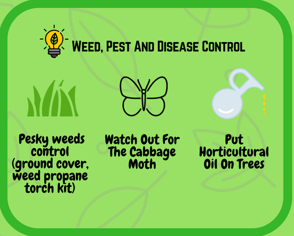 Spring Garden: Weed, Pest and Disease control