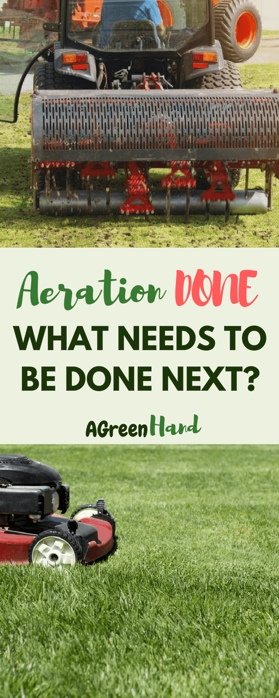​Lawn aerating is a simple process but it is important to keep your lawn healthy and happy. Aerating will fix compacted soil so water, air and nutrients can get to the plants. There are some maintenance processes you need to do after aeration to ensure new grass will grow healthy and strong.