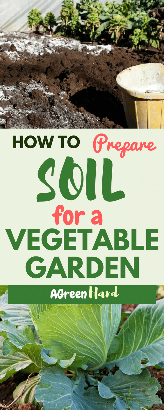 Preparing the soil can be tiring, but the payoff is definitely worth it. Apart from amending the soil to provide the nutrients it needs, you should also work on the soil using a tiller. We hope that our guide will help you in having a healthy vegetable garden