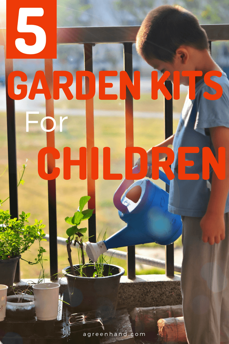 Did you know gardening with kids is a remarkable idea? Children will help you reach the handy tools and seedlings as they learn what it takes to grow healthy food. In the process, they will appreciate Mother Nature and learn how to take care of the environment as they grow.
