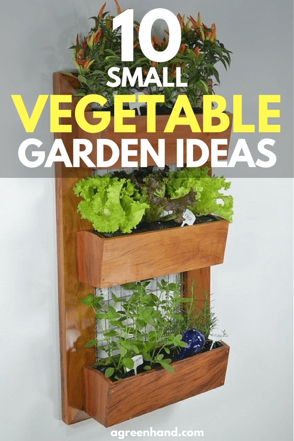 10 Small Vegetable Garden Ideas - A Green Hand