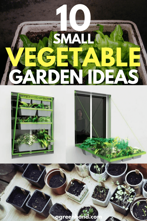 There are certainly many ways to maximize your space for growing vegetables. Whether you utilize windowsill gardening or vertical gardening, we hope that this inspired you to start your own vegetable garden.