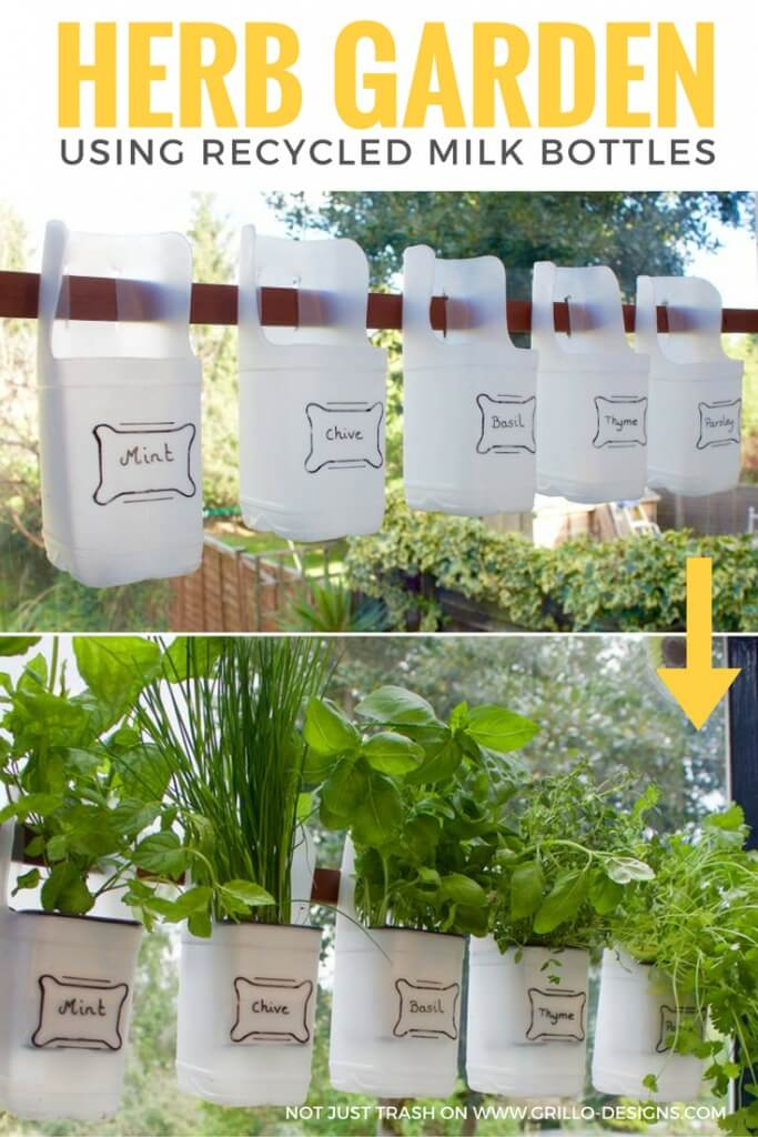 Indoor Bottle Herb Garden – From Recycled Milk Bottles