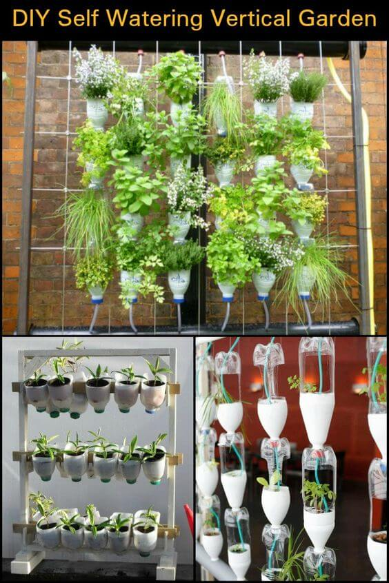 Self Watering Vertical Garden