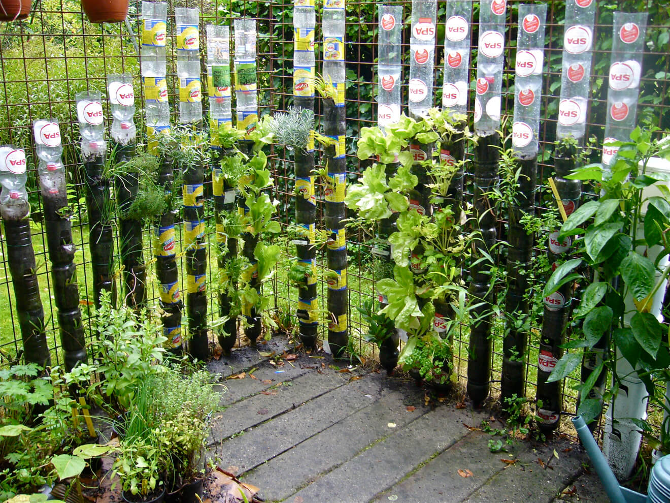 DIY Vertical Plastic Bottle Tower Gardening