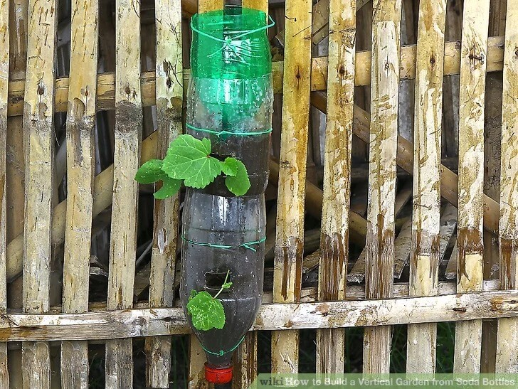 A Vertical Garden from Soda Bottles