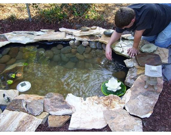 Backyard Pond And Water Ideas