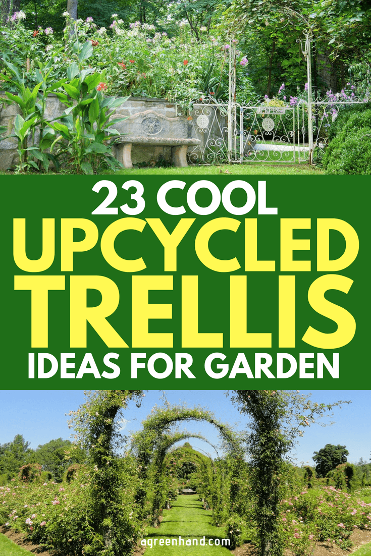 Here're 23 Cool UpCycled Trellis Ideas For Your Garden #gardeningideas #garden #agreenhand