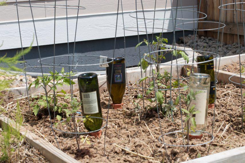DIY Wine Bottle Ideas