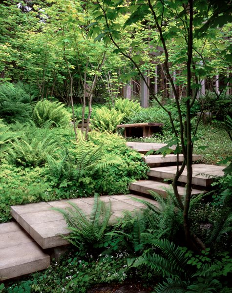 Garden Stair Ideas