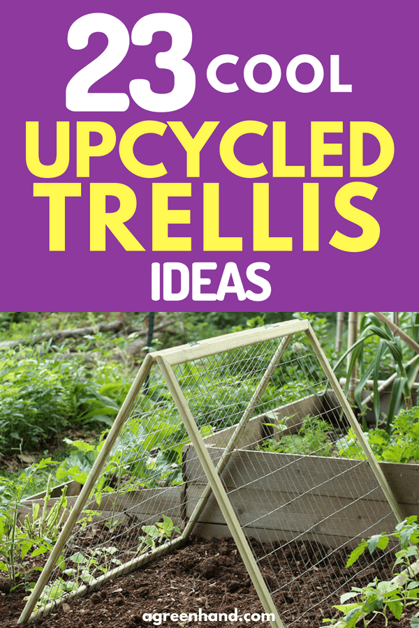 Checkout these 23 Cool Up-Cycled Trellis Garden Ideas #gardeningideas #agreenhand