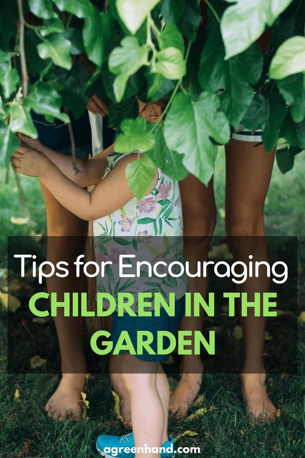 How to attract Kids into gardening | Kids Garden Activities | Gardening With Kids #gardening #kidgarden #agreenhand #gardenideas