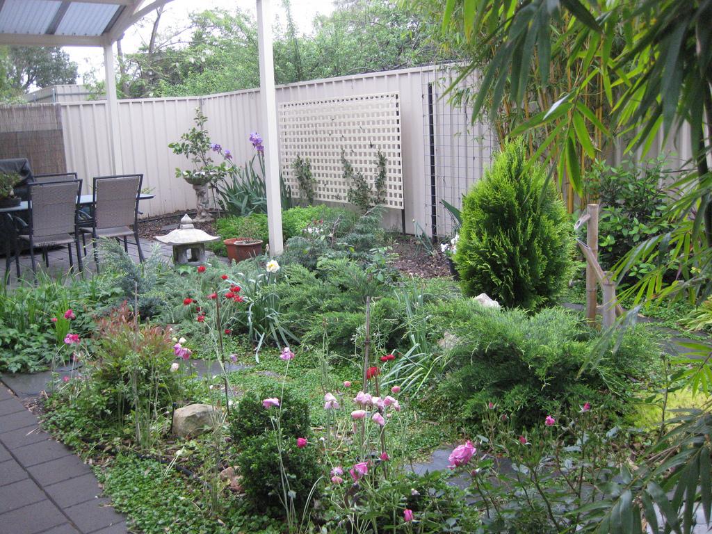 Brings gardens alive in natures garden