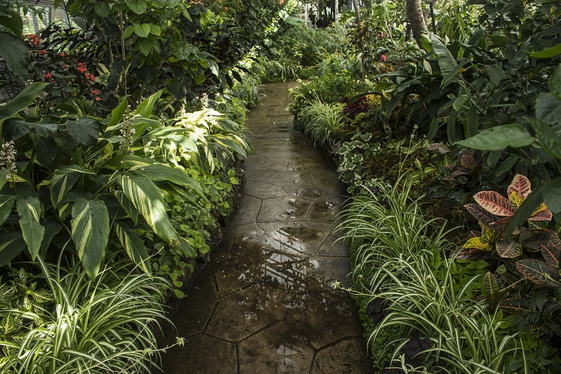 Natures gardening