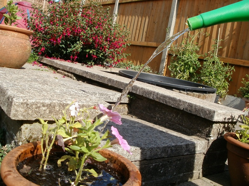 how to water garden
