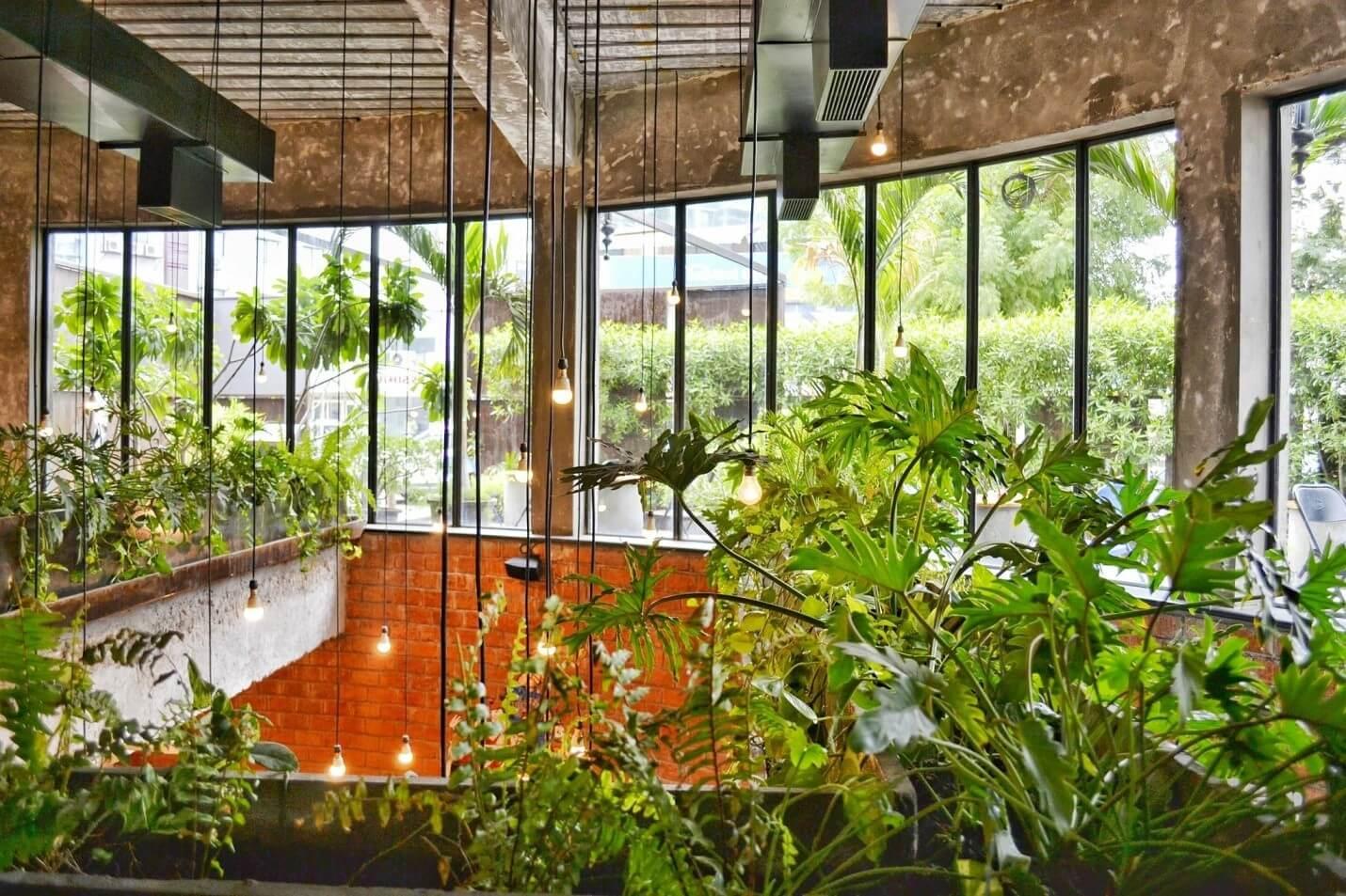 Effective Tips for Successful Indoor Gardening 1