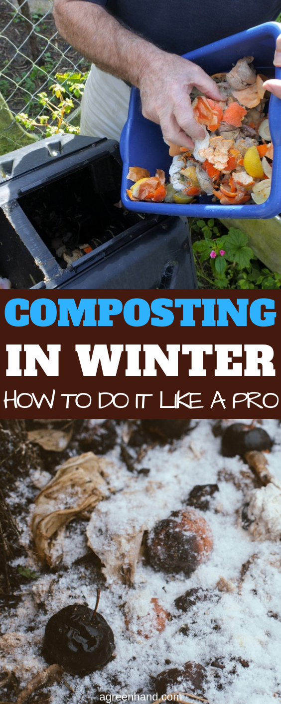Keeping your compost active in winter can keep your kitchen scraps useful. The compost you make will also give you abundant reserve so that you're ready when springtime comes. Plus, it's a good winter workout! #composting #compost #compostinginwinter #agreenhand