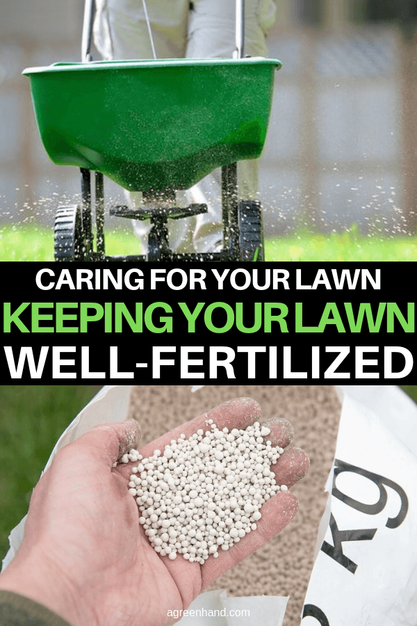Keeping Your Lawn Well-Fertilized